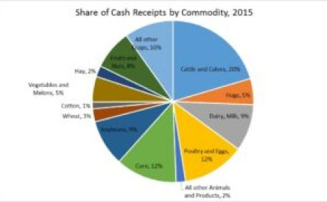 Figure 2. Share of Cash Receipts by Commodity, 2015. Farm Income 2016. Ag Trends. Agricultural Economic Insights.