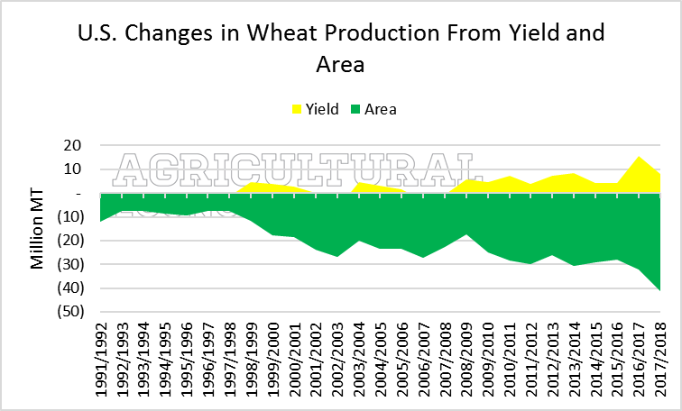 Global Wheat Production. Ag Trends. Agricultural Economic Insights