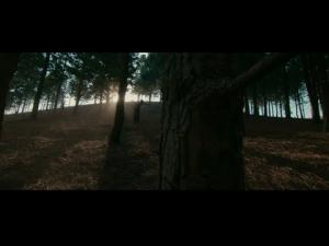 VIDEO: Fireboy DML – Champion ft D Smoke