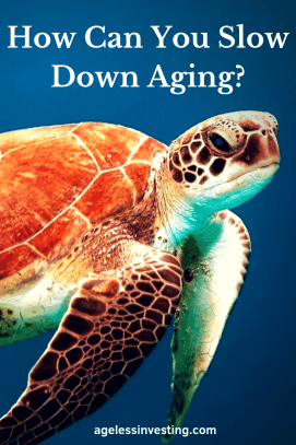 """A turtle under water, headline """"How Can You Slow Down Aging?"""