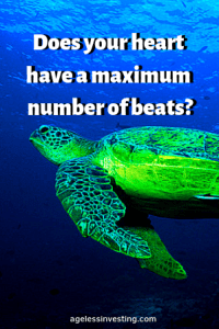 """A green turtle swimming right to left in dark blue water, with the words """"Does your heart have a maximum number of heart beats?, agelessinvesting.com"""""""