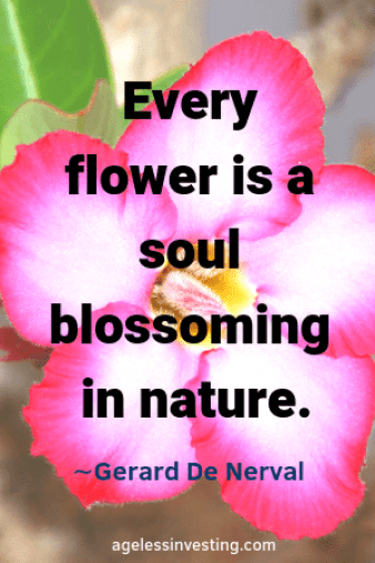 "A pink and white flower, quote ""Every flower is a soul blossoming in nature."" -Gerard De Nerval"