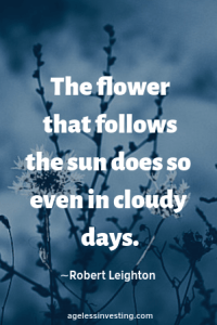 """Flowers on a cloudy day, quote """"The flower that follows the sun does so even in cloudy days."""" -Robert Leighton"""