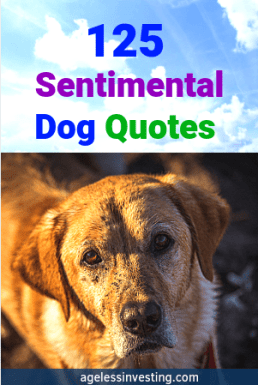 """A sad looking dog, headline """"Sentimental Dog Quotes For the Master of Unconditional Love"""""""