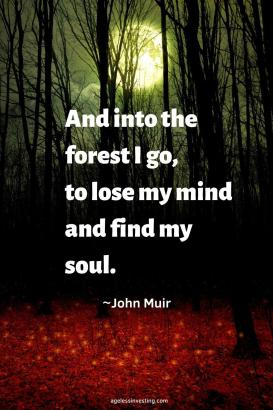 "A picture of a full moon through the trees in the forest, quote ""And into the forest I go, to lose my mind and find my soul"""
