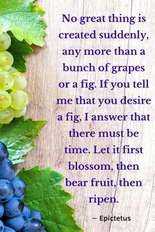 "A picture of grapes on a wooden board, quote ""No great thing is created suddenly, any more than a bunch of grapes or a fig. If you tell me that you desire a fig, I answer that there must be time. Let it first blossom, then bear fruit, then ripen. ∼ Epictetus."