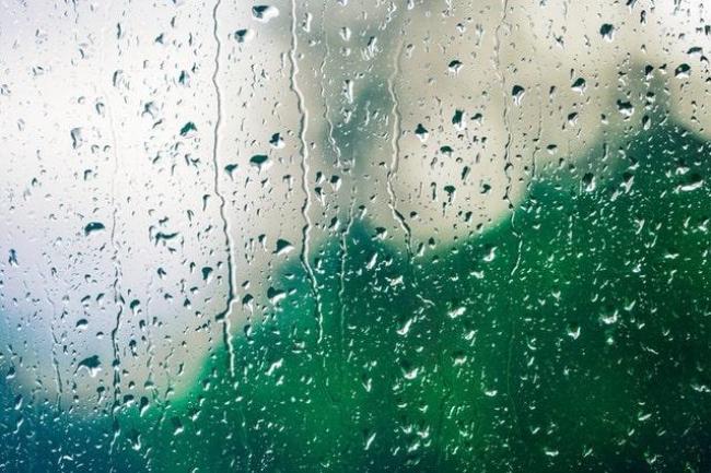 Rain falling on grass