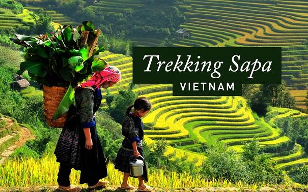 Meilleure période pour voyage au vietnam
