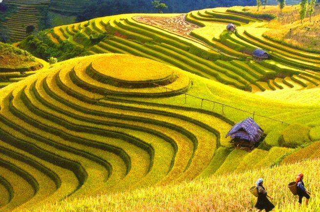 Voyage Yen Bai et decouverte ses sites touristiques