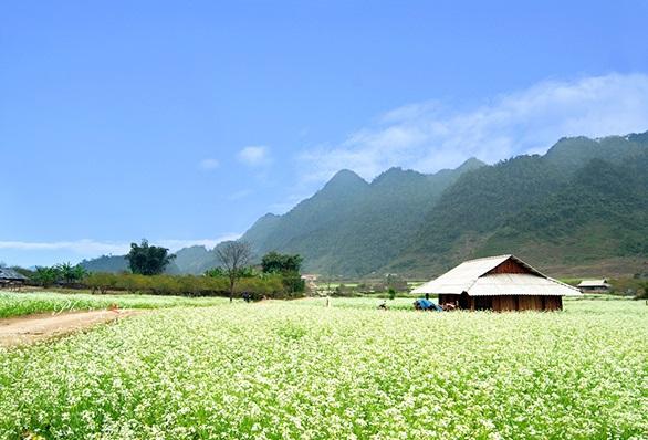 Meilleure agence de voyage au vietnam