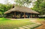 Visite Tuyen Quang et ses sites à ne pas manquer, Tan trao