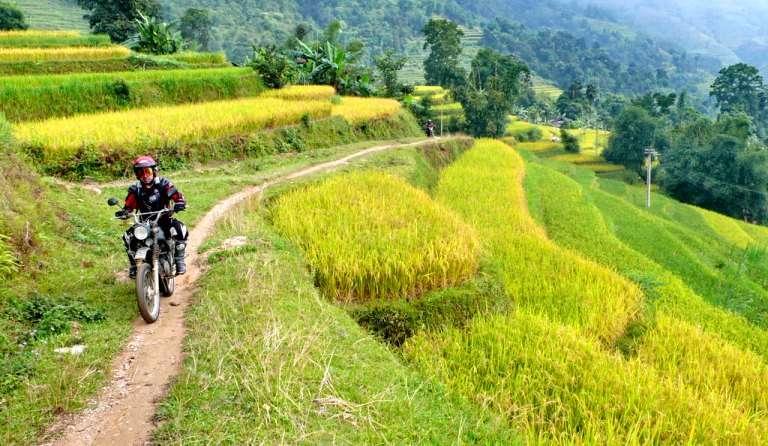 voyage à moto travers de rizières en terrasse