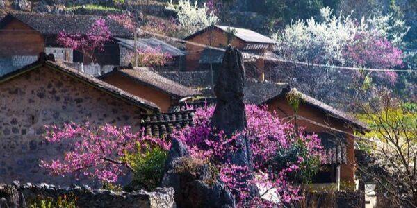 voyage au vietnam au printemps