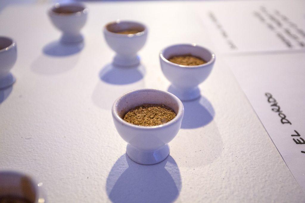 Performance artistique par Amin Gulgee reportage photo par Nathalie Tiennot à Paris