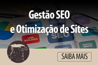 gestão_SEO_otimização_de_site-publicidade-agencia-brasilia