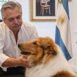 """El Presidente Alberto Fernández dejó un mensaje a los niños y adolescentes para que """"se queden en sus casas"""""""