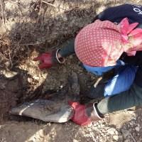 El dolor de cavar la posible fosa de un hermano
