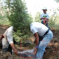 Unilever reforesta parque Xochitla