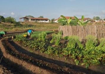 projetos para agricultura familiar linha de crédito coopergiro