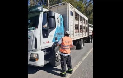 Controles a más de 600 transportes en rutas del norte bonaerense