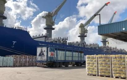 Certificación a la exportación de un embarque histórico de cítricos argentinos