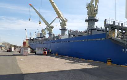 El Senasa acompaña a los agentes que verifican productos vegetales en el puerto de Zárate
