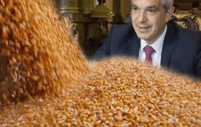 Productores prevén pérdidas de USD 1.100 millones por las limitaciones en las exportaciones de maíz