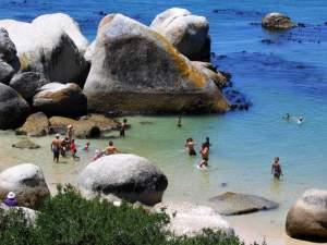 cape town beach photos boulders beach simonstown