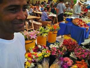 cape town food market tokai - earth fair 5