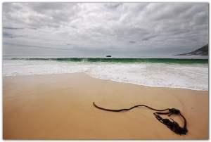 Simonstown Beach Near Cape Town
