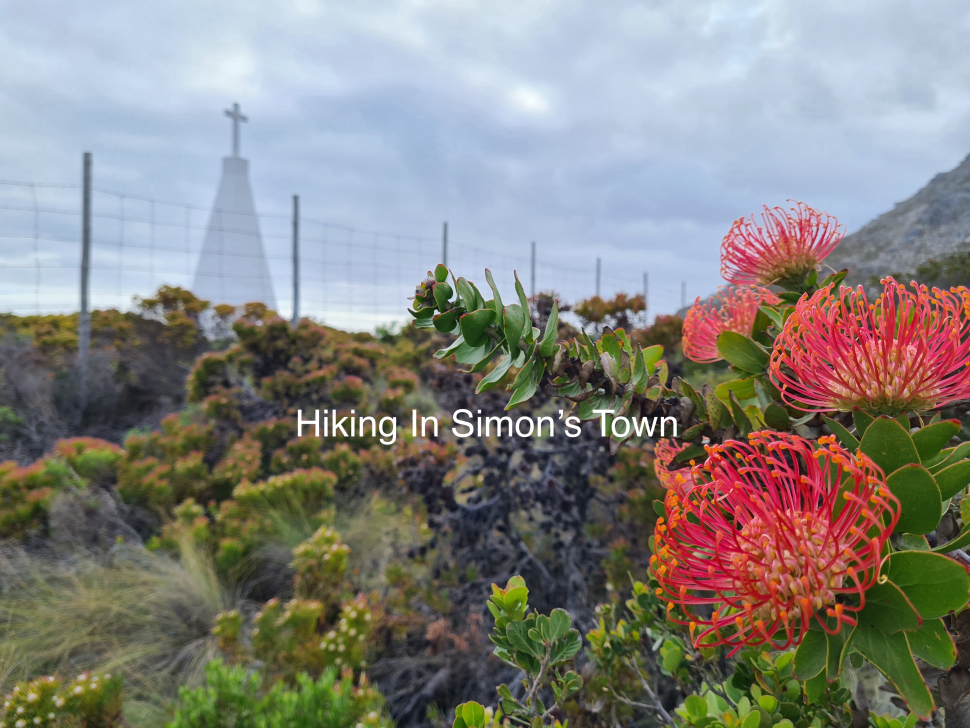 Beautiful Things to Do In Simons Town Hiking the local mountains