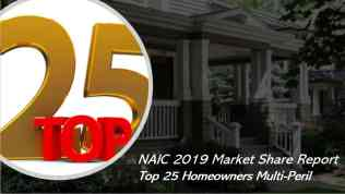 Who are the largest homeowners insurers in the US?