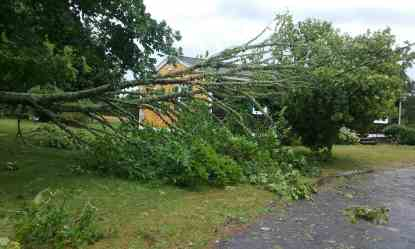 Insurance coverage regarding Cape Cod Tornado