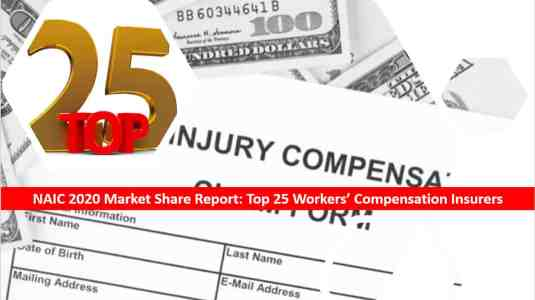 Agency Checklists NAIC 2020 Market Share Report - Top 25 Workers Compensation Insurers