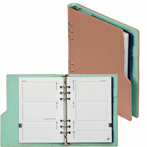 Agenda 2019-2020 organizer Kalpa A5 compact pastel roze/groen
