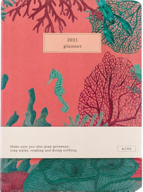 &INK Agenda 2021 - Aqua Auteur: A-Journal - Overig (8719992460809)