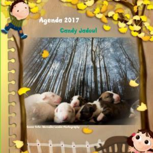 Agenda klein bull terrier friends 2017