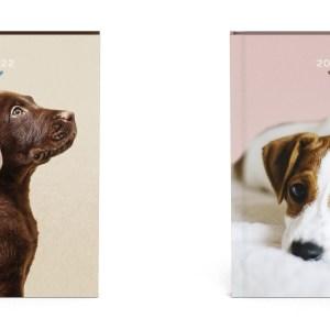 Honden Desk Agenda 2022