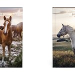Paarden Desk Agenda 2022