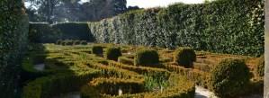 jardim dos jotas Jardim botânico do Porto