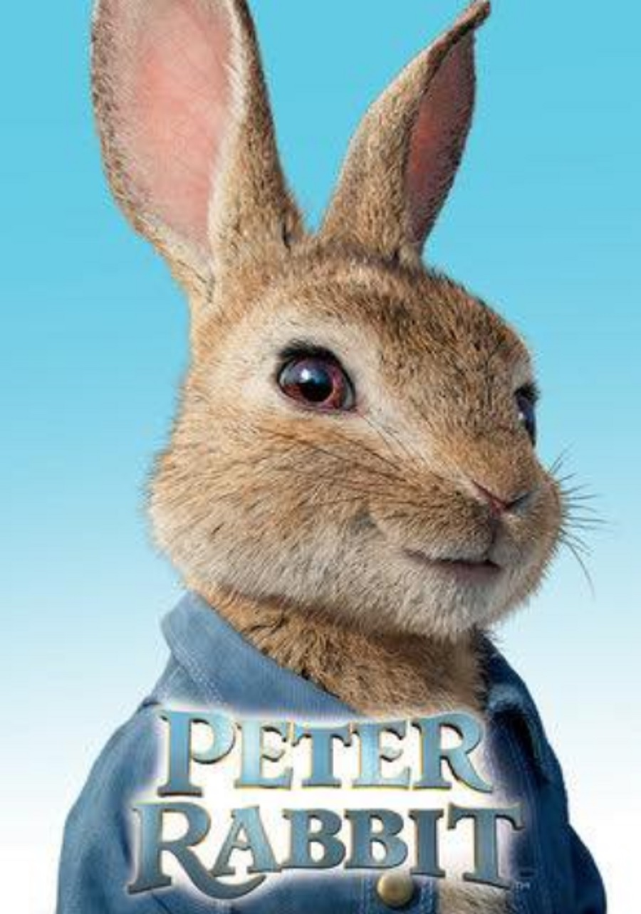Marca Cacabelos fiesta temática peter rabbit enel