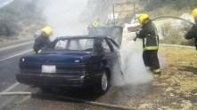 realizan-bomberos-de-hidalgo-mas-de-350-servicios-de-asistencia-en-febrero2