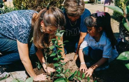 Voluntariado del IMSS en Hidalgo forestó áreas verdes de la Casa de la Tercera Edad1