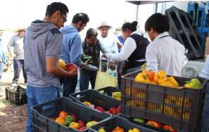Ayuntamiento de Tizayuca y el BACEH brindan apoyo alimenticio a más de 400 familias 3