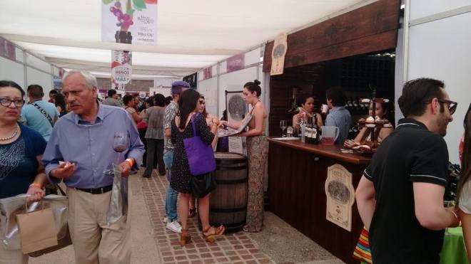 Festival Internacional del Vino 11