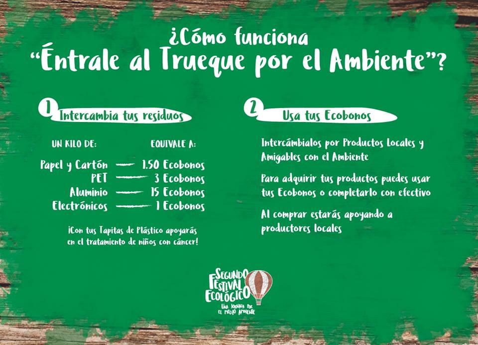 festival ecológico 2