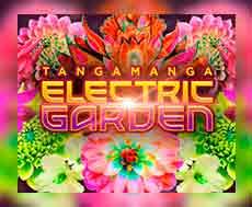 29 Septiembre Tangamanga Electric garden