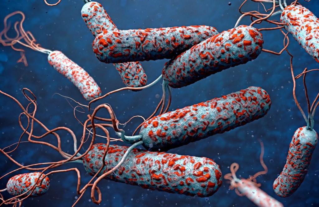 ¡Confirmado! Después de 21 años se registra el primer caso de cólera en Tabasco