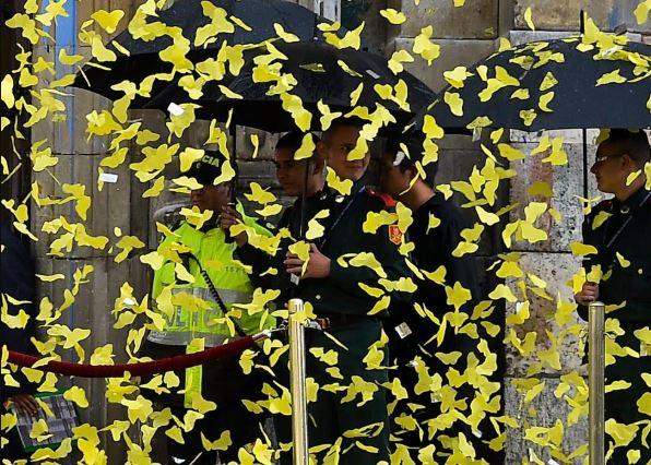 Yucatán: Cientos de mariposas llenan de amarillo las calles de Mérida
