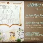 19 de Mayo – Introducción al uso de plantas medicinales